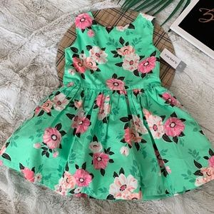 Carter's Pink and Green Sleeveless Floral Dress 2T